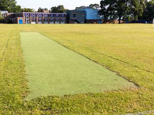 Cricket pitch 1