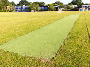 Cricket pitch 2