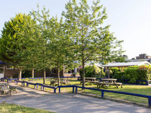 Outdoor grass area 3